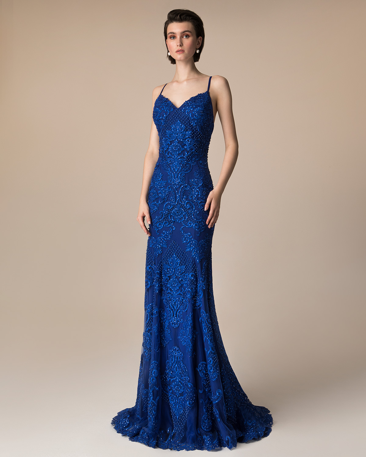 Evening Dresses / Long evening dress with beading and applique lace